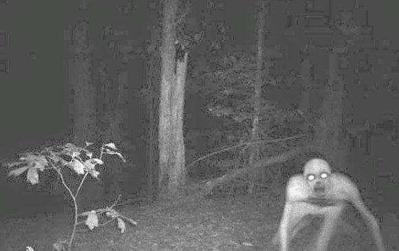 Fantasma en bosque