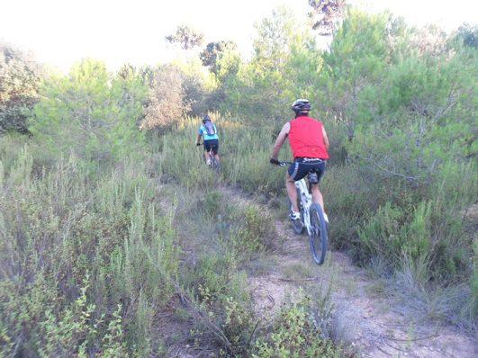 Consejos mountain bike 2