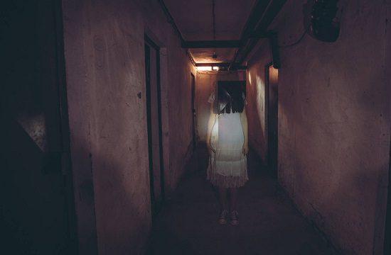 Que son los fantasmas 2