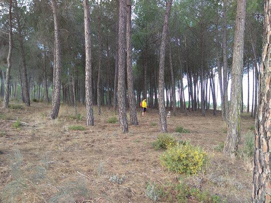 Ruta senderismo poblado Ibero barranco la Bastida 2