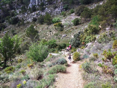 cima Montcabrer desde Cocentaina 5