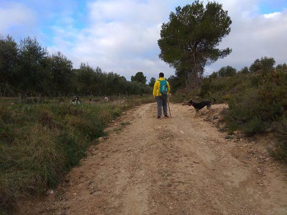 Ruta senderismo ermita Morera Fuset 2