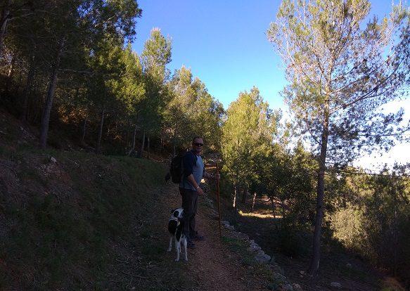 Senderismo Castell Carricola font Freda 4