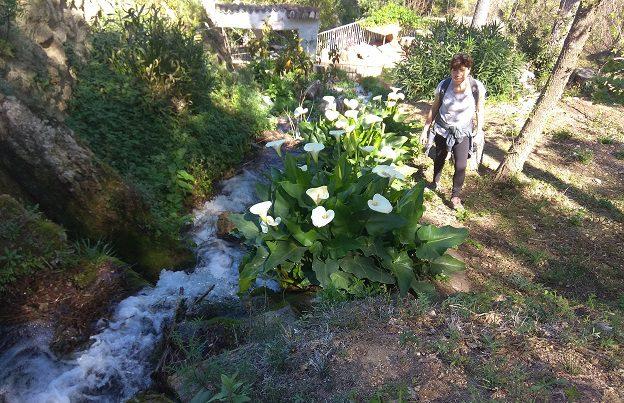 Ruta senderismo jardines del Caid 6