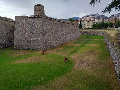 Ciudadela san Pedro de Jaca